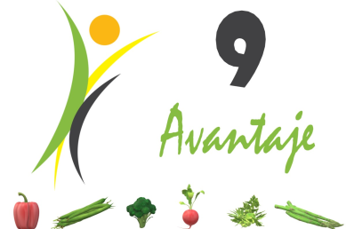 Blog FitFoodWay